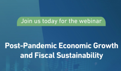 """Holding the virtual meeting """"Economic growth and financial sustainability in the post-pandemic period"""""""